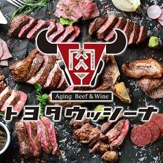 熟成肉バル トヨタウッシーナのコース写真