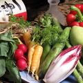 料理メニュー写真本日の野菜