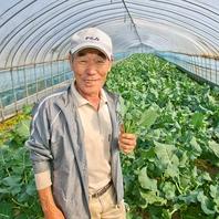 鬼塚農園獲れの新鮮野菜!