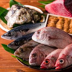 魚トの神 府中本店のコース写真
