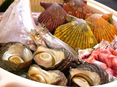 漁師から直送のピチピチ鮮魚をどうぞ!【食堂よっちゃん】。