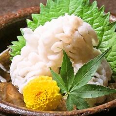 漁 地鶏 創作料理 こじごろのおすすめ料理1