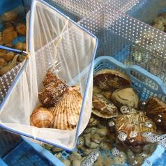 魚八 上野店の画像