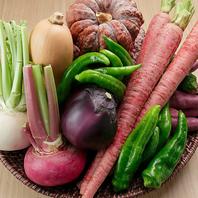 野菜が主役のメニューがいっぱい!