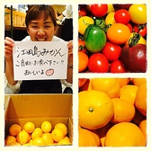 毎朝新鮮な果物や、