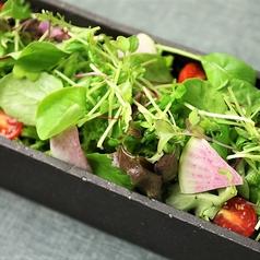 【ステーキご注文で】サラダ食べ放題
