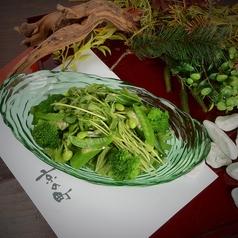 八種野菜グリーンサラダ