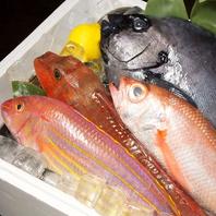 新鮮な魚、漁港直送!!!