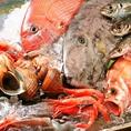 【天然鮮魚】北海道は函館、富山は氷見、三重は尾鷲から直送の素材!旬の食材をご堪能下さい♪
