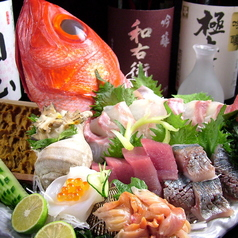 阿波海鮮 魚家の写真