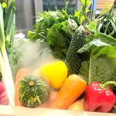 契約農家から届く新鮮野菜!しゃぶしゃぶはもちろん、サラダでも楽しんでください♪食べ放題では30種類以上の野菜と茸が楽しめます。