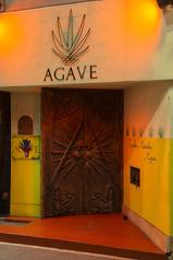 AGAVEの写真