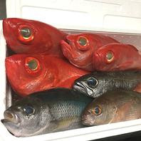 新鮮なお魚でおもてなし!