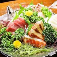 ぷりぷりの鮮魚のお刺身もご用意♪