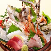 とれたて新鮮魚貝類