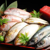 その日〆た新鮮な魚介をご提供!