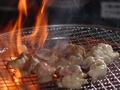 料理メニュー写真ホルモン(ホソ・小腸)