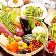 料理メニュー写真野菜盛り
