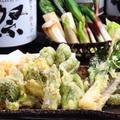 料理メニュー写真山菜の天婦羅
