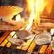 ◆ 根室・小樽・紋別直送海鮮 ◆~生牡蠣 ・ 海鮮炉端~