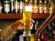 国産生ビールから外国産のビールまで
