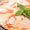 料理メニュー写真完熟トマトのマルゲリータピザ~完全個室イタリアン Ark Lounge新宿西口駅前店~