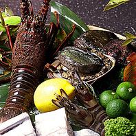 【活き海鮮】黒鮑、伊勢海老など新鮮な食材をご用意