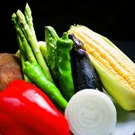 毎朝仕入れる新鮮な朝獲れ阿波野菜