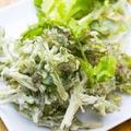 料理メニュー写真パクチー天ぷら