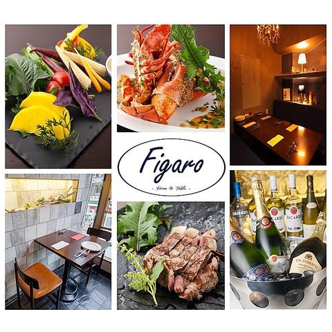 イタリアン・スパニッシュ Figaro(フィガロ) 本厚木