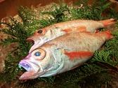 釣瓶鮨の雰囲気2
