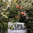時期になると敷地内に実るりんご。お客様にお配りしたり、こちらを使用しアップルパイを作ることも。