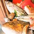 【福山駅から徒歩5分】日本中の海鮮が楽しめる居酒屋☆お造りはもちろん、名物料理の『浜炊き(つぎ足しで作っている煮付け)』、『炉端焼き』も大人気!多彩の調理法で海鮮料理をご堪能いただける居酒屋です。海鮮料理にぴったりの日本酒とご一緒にお召し上がりください。