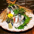 料理メニュー写真関サバ刺