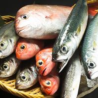 旬の魚をお手頃価格で★