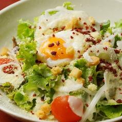 温玉シーザーサラダ/水菜と大根のじゃこサラダ