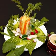 料理メニュー写真三浦野菜 青木農園のバーニャカウダー