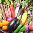 野菜は鎌倉野菜を使用。旬の食材を活かした創作和食の数々をお楽しみいただけます。素材にこだわっているから出せる味。マグロの燻製とカリカリサラダ・大根釜と季節野菜の炊き合わせ・もっちりニョッキとベーコンのパイ包みなど、美味し料理と旨しお酒でゆっくりとした時間を…。