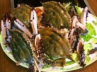 地元産の新鮮な魚介類が楽しめる!