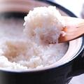 料理メニュー写真名物!炊き立ておひつご飯 (一合/二合)