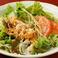 蒸し鶏の棒棒鶏サラダ/豆腐のごまドレッシングサラダ