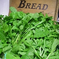 【大多喜産ルッコラ・バジル】ハーブ専門に栽培するサン農園のルッコラ・バジルは共に葉がしっかりして香りが強い。