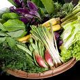 有機野菜もシャキシャキとした歯ごたえと冷蔵したものを新鮮なうちにお出ししてますので、野菜の味を舌の上で確かめてみてください。これでもかといわんばかりの主役級の主張がなされる彩り鮮やかな緑黄色野菜はコースにも入ってます。