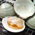 料理メニュー写真大白ハマグリの浜焼き(1個)