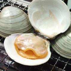 白ハマグリの浜焼き(1個)