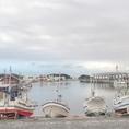 三崎港は南面の城ヶ島が自然の防波堤となり、穏やかな天然の良港として平安時代の昔から利用されてきたといわれる。近年は養殖ハマチ・マダイなどの活魚の水揚が行われ、水産業の振興のために特に重要な特定第3種漁港に指定されている港だ。気軽な日帰り観光地として人気のスポットです。三浦海岸からバスを乗り継ぎ30分