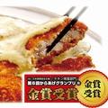 料理メニュー写真チキン南蛮フライ (ハーフ/ビックダブルサイズ2枚・フル)