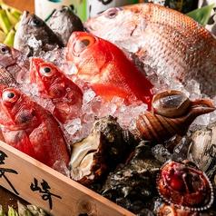 おさかなや 魚魚権の特集写真