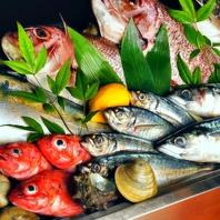 名駅エリア生粋の職人が目利きで選ぶ新鮮な魚介が自慢!