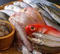 魚屋としても営んでいる当社は、セリに参加できる『買参権』を持っています。毎朝、朝獲れの鮮度の良い魚を仕入れ、お客様においしい料理を提供いたします。